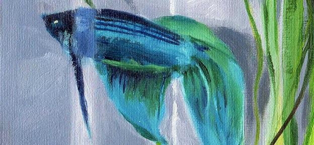 Blue-Boy_banner