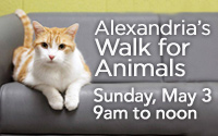 Alexandria's Walk for Animals - May 9, 2015 - 9am to Noon