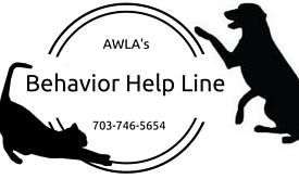 Behavior Help Line