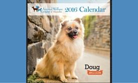 Calendar Web image