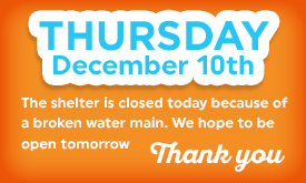 Shelter Closed Thursday, Dec 10th, due to water main break!