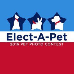 """""""Elect a Pet"""" Calendar Contest"""