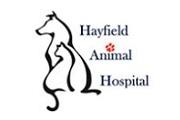 Hayfield Animal Hospital - AWLA Animal Champion
