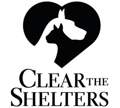 Cheat Sheet to Clear the Shelters