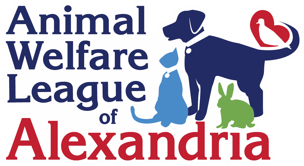 Frequently Asked Questions Alexandria Animals