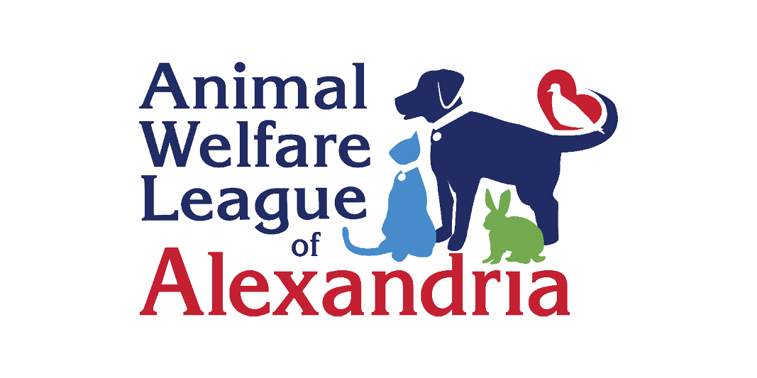Alexandria Animals Animal Welfare League Of Alexandria Awla